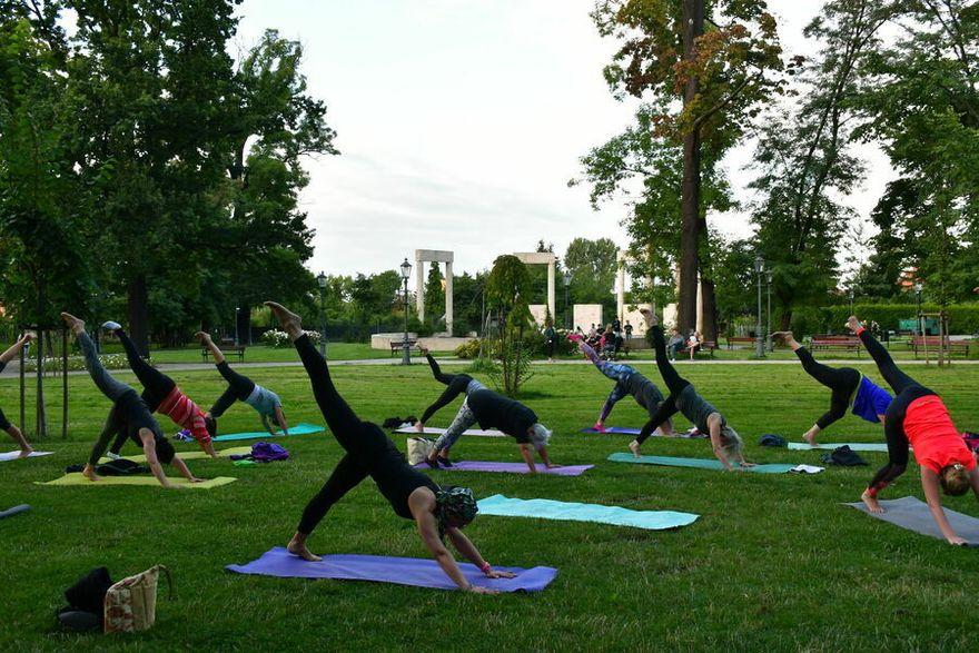 Świebodzice: Parkowa joga